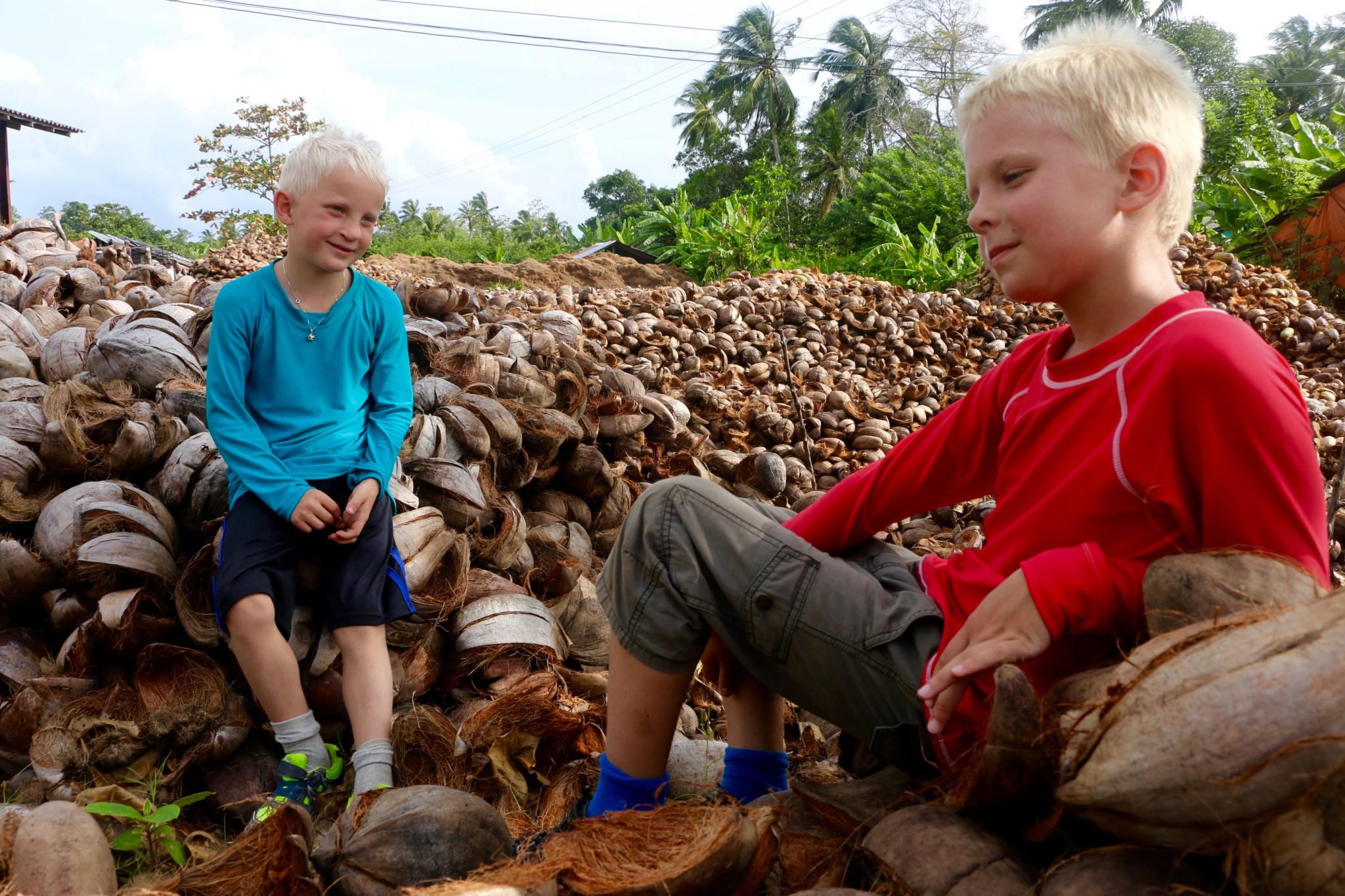 coconut sri lanka