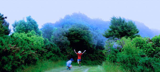 Vandra med barn – Abel Tasman National Park
