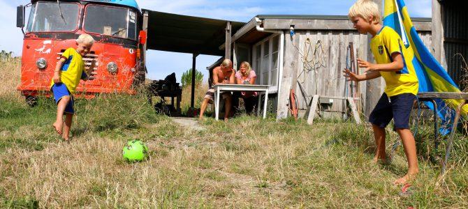 Vi jobbar på farm i Nya Zeeland – Dag 6