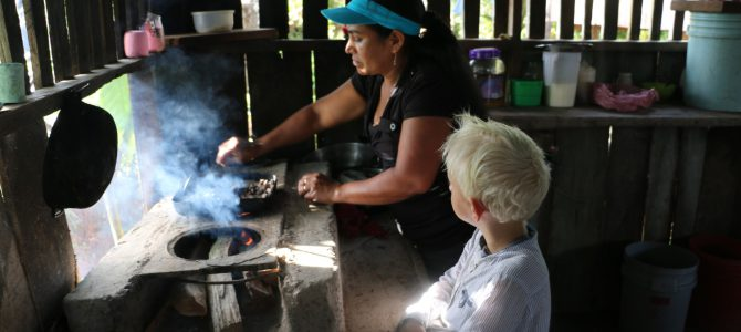 Chokladtillverkning i regnskogen