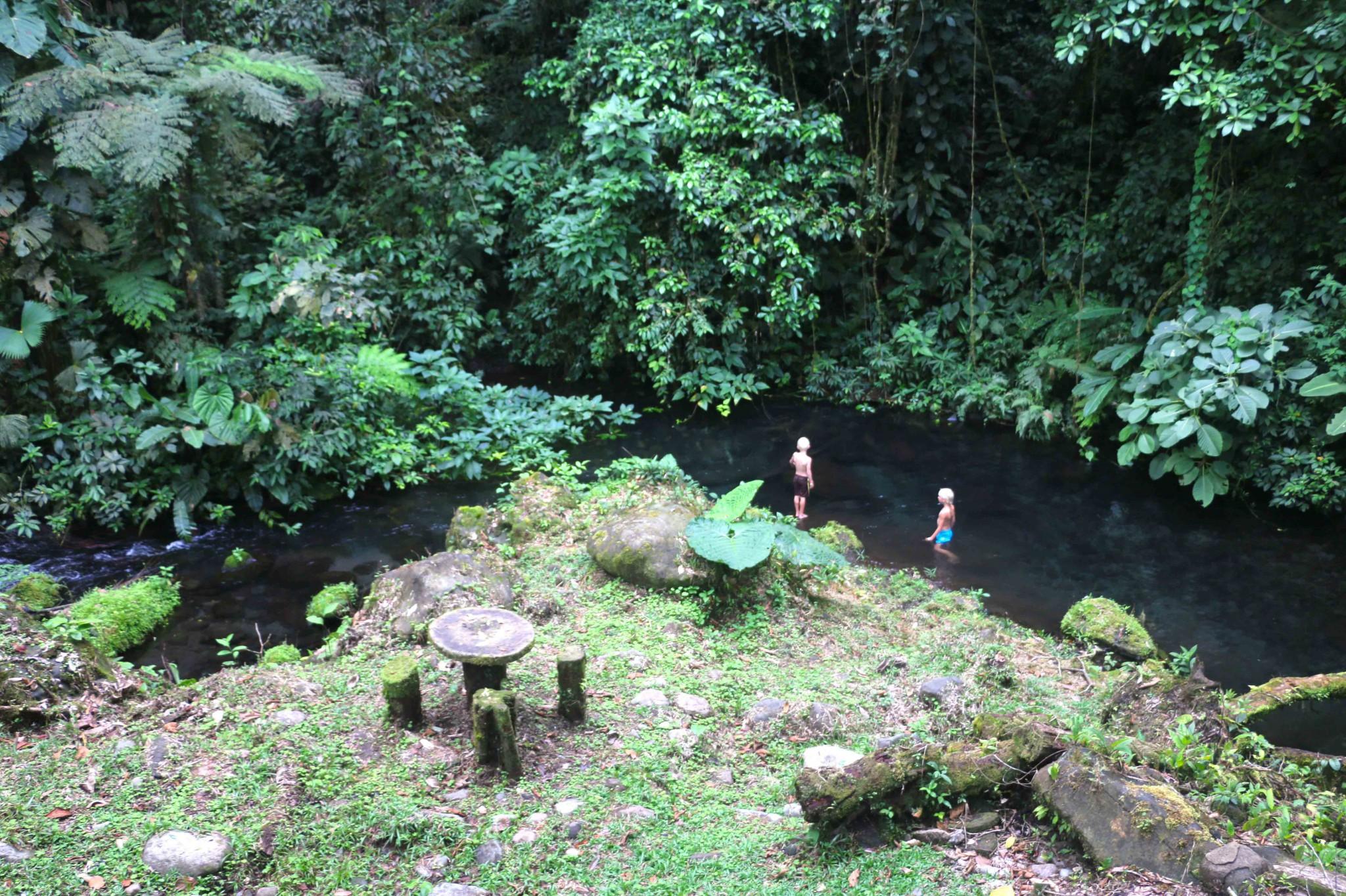 regnskogen i costa rica airbnb